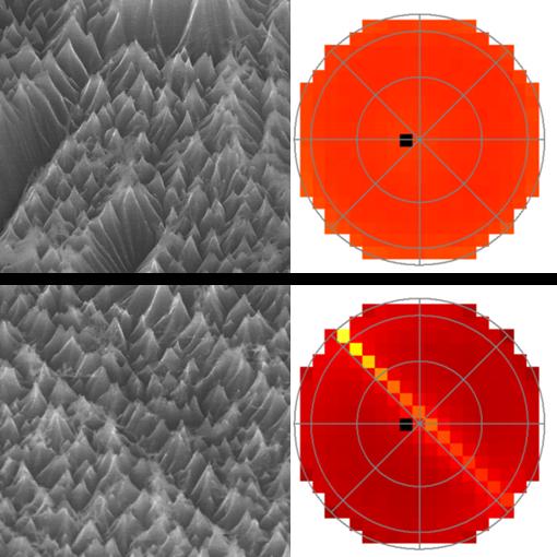 Nanotexturation du silicium par plasma : nouvelle publication en collaboration avec le NIST