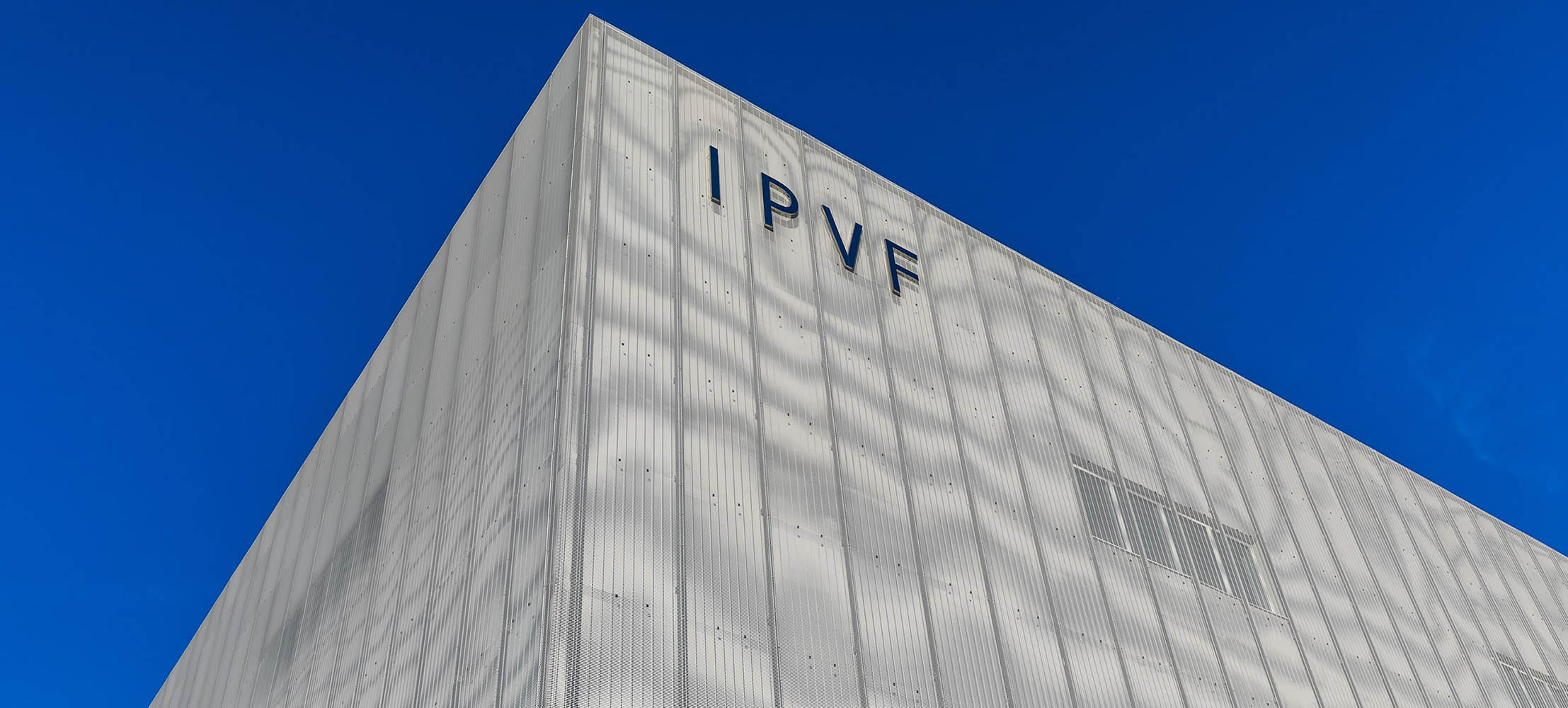 Newsletter IPVF – October 2019